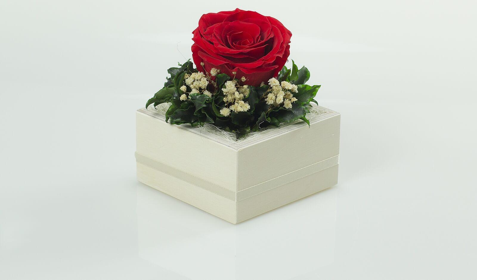 Piękna czerwona wieczna róża umieszczona w kompozycji standard