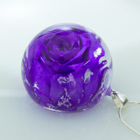 Violett (V-01)